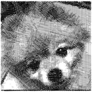 犬の鉛筆画